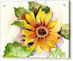 Sunflower Watercolor Acrylic Print by Tiberiu Soos