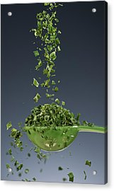 1 Tablespoon Chives Acrylic Print by Steve Gadomski