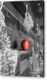 The Apple Acrylic Print by Laurinda Bowling