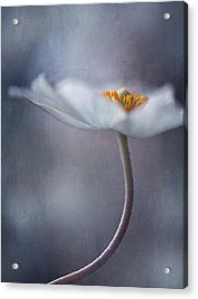 The Beauty Within Acrylic Print by Priska Wettstein