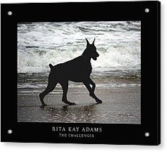 The Challenger Acrylic Print by Rita Kay Adams