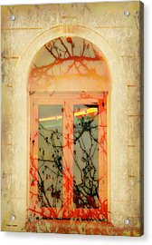 The Other Side Acrylic Print by Barbie Guitard