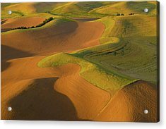 The Palouse From Above Acrylic Print by Latah Trail Foundation
