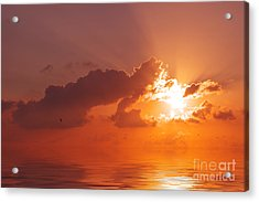 The Sunset Acrylic Print by Angela Doelling AD DESIGN Photo and PhotoArt