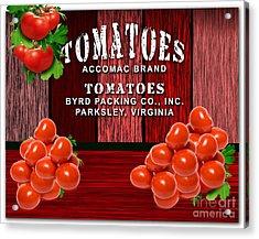 Tomato Farm Acrylic Print by Marvin Blaine
