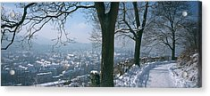 Trees Along A Snow Covered Road Acrylic Print by Panoramic Images