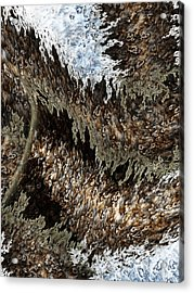 Tumult Acrylic Print by Christopher Gaston