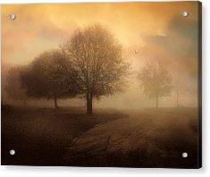 Undiscovered Acrylic Print by Jessica Jenney