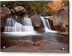 Upper Screw Auger Falls Acrylic Print by Patrick Downey