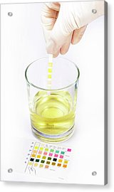 Urine Home Test Kit Acrylic Print by Cordelia Molloy