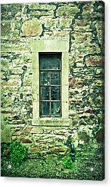 Window Acrylic Print by Tom Gowanlock