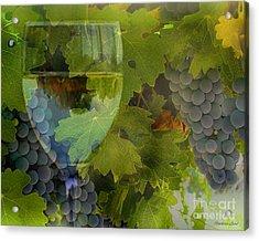 Wine Acrylic Print by Stephanie Laird