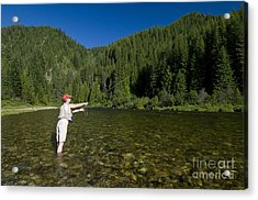 Woman Fly Fishing, Kelly Creek Acrylic Print by William H. Mullins