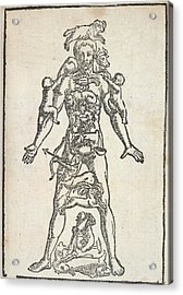 Zodiac Man Acrylic Print by British Library