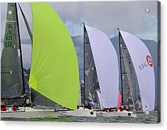 Bay Spinnakers Acrylic Print by Steven Lapkin
