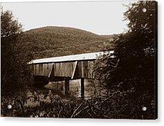 10602-17s Acrylic Print by Mike Davis