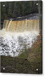 Tahquamenon Falls Acrylic Print by Gary Marx