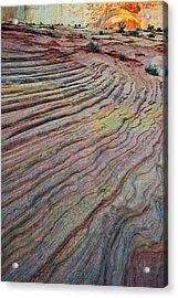 Usa, Utah, Zion National Park Acrylic Print by Jaynes Gallery