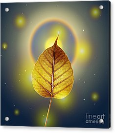 Pho Or Bodhi Acrylic Print by Atiketta Sangasaeng