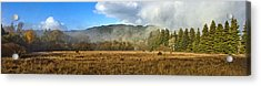 12.7 Meadow Panorama Acrylic Print by Larry Darnell