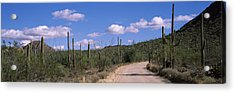 Road Passing Through A Landscape Acrylic Print by Panoramic Images
