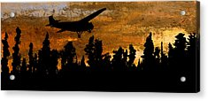 1920's Ford Trimotor Airplane Skims Treetops Acrylic Print by R Kyllo