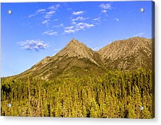 Alaska Mountains Acrylic Print by Chad Dutson