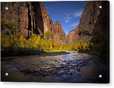 Along The River Acrylic Print by Dominique Dubied