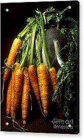 Carrots Acrylic Print by Bernard Jaubert
