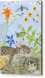 Cat And Mouse Acrylic Print by Gerald Strine