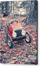 Childhood Memories Acrylic Print by Edward Fielding