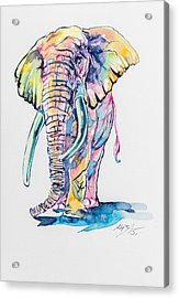 Colorful Elephant Acrylic Print by Kovacs Anna Brigitta