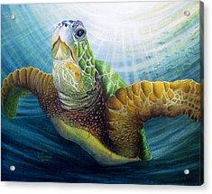 Diving The Depths Acrylic Print by David Richardson