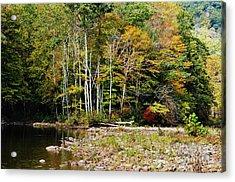 Fall Color River Acrylic Print by Thomas R Fletcher