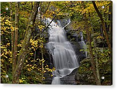 Forest Waterfall In Autumn Acrylic Print by Stephen  Vecchiotti