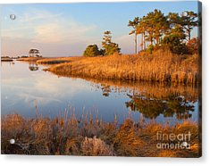 Gordons Pond Acrylic Print by Robert Pilkington