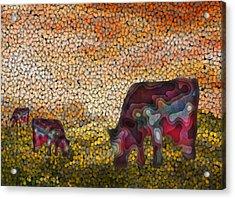 Grazing  Acrylic Print by Jack Zulli