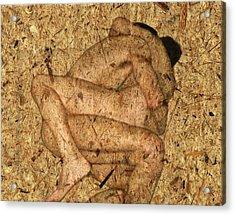 Kuma Sutra Acrylic Print by Kurt Van Wagner