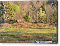 Maine Blueberry Field In Spring Acrylic Print by Keith Webber Jr