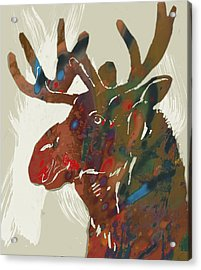 Moose - Wild Animal Stylised Pop Art Drawing Portrait Poster Acrylic Print by Kim Wang