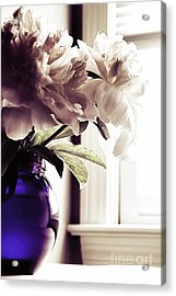 Peony Acrylic Print by HD Connelly