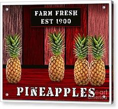 Pineapple Farm Acrylic Print by Marvin Blaine