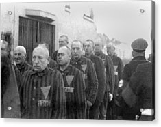 Prisoners In The Concentration Camp Acrylic Print by Everett