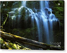 Proxy Falls Oregon Acrylic Print by Bob Christopher