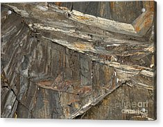 Rock  Acrylic Print by Graham Foulkes