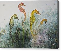 Sea Horses Acrylic Print by Nancy Gorr