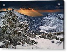 Sun Rays Acrylic Print by Guido Montanes Castillo