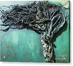 The Greenman Acrylic Print by Ann Fellows