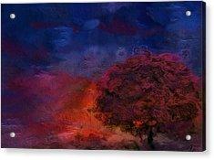 Through The Mist Acrylic Print by Jack Zulli