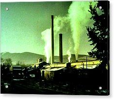 Twin Peaks Acrylic Print by Luis Ludzska